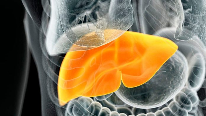 Important News: Diabetes can cause fatty liver disease, include these five things in life, stay away from both diseases
